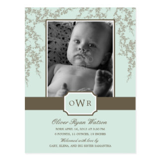 Lovely Blossoms Baby Birth Announcement (Aloe) Postcard