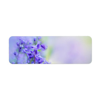 Lovely bluebells close up label