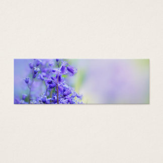 Lovely bluebells close up mini business card