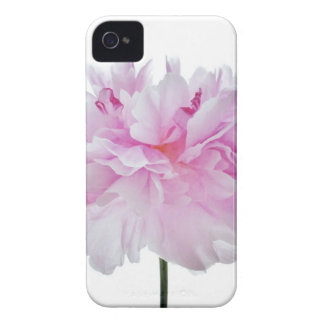 Lovely Bright wink Peony Flower Photo iPhone 4 Case-Mate Case