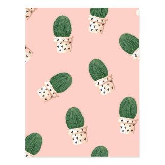 Lovely Cactus Postcard