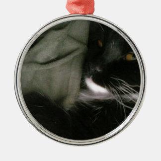 Lovely Cat Bonita Premium Round Ornament