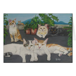 Lovely Cats Cards