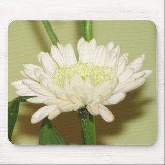 Lovely Chrysanthemum Mouse Pad