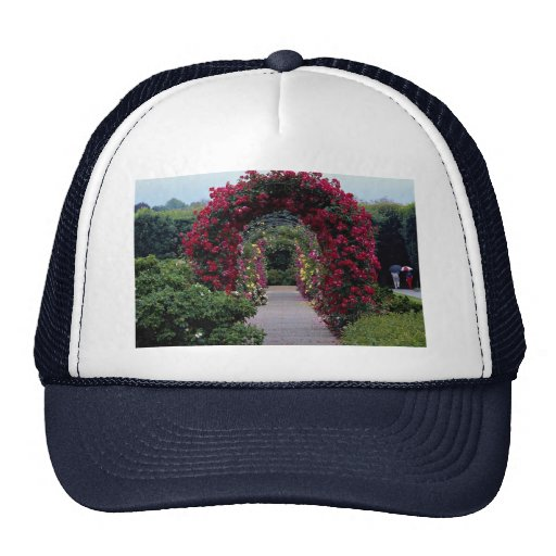 Lovely Climbing Rose Arches Mesh Hat