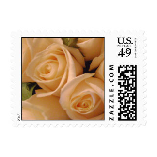 Lovely Cream Roses Wedding Postage