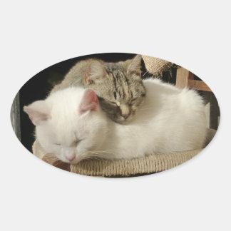 Lovely cuddling white and tabby kittens oval sticker