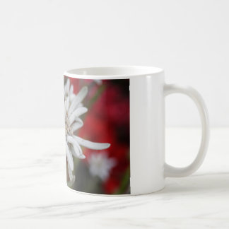 Lovely Edelweiss Leontopodium nivale Coffee Mug