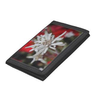 Lovely Edelweiss Leontopodium nivale Trifold Wallets