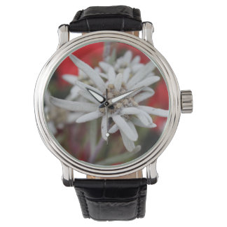 Lovely Edelweiss Leontopodium nivale Wrist Watch