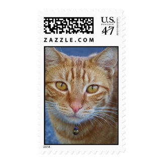 Lovely Eyes_ Postage_by Elenne Boothe Postage