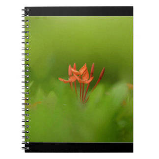 Lovely flower in the world spiral note book