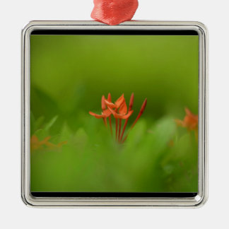 Lovely flower in the world square metal christmas ornament