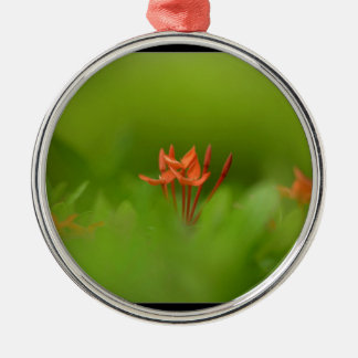 Lovely flower in the world round metal christmas ornament