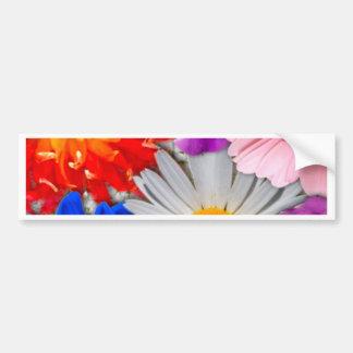 lovely flowers,blue bumper sticker
