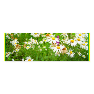 lovely flowers business cards