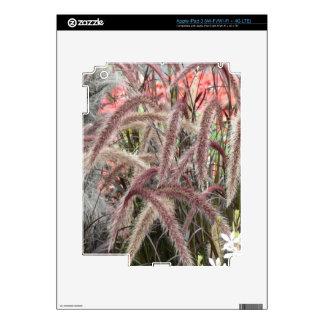 Lovely garden pics 04 iPad 3 skin