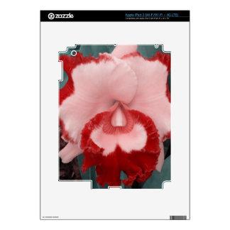 lovely Garden Pics 12 Skins For iPad 3