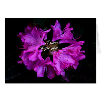 Lovely Get Well Card Featuring Purple Rhododendron