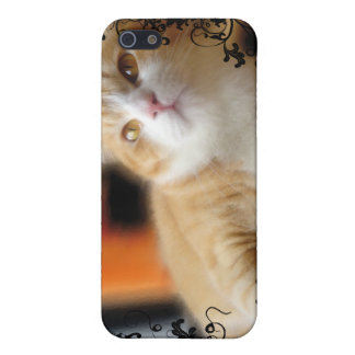 Lovely Ginger Cat Cover For iPhone SE/5/5s