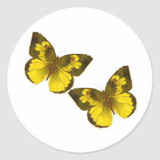 Lovely Golden Butterflies Classic Round Sticker