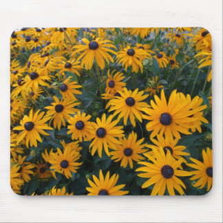 Lovely golden daisy flowers mouse pad