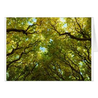 Lovely golden trees card