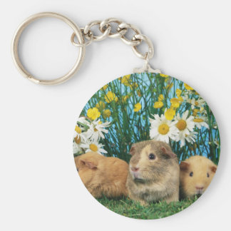 Lovely Hamsters 35 Keychain