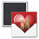 Lovely Heart Cats Refrigerator Magnets