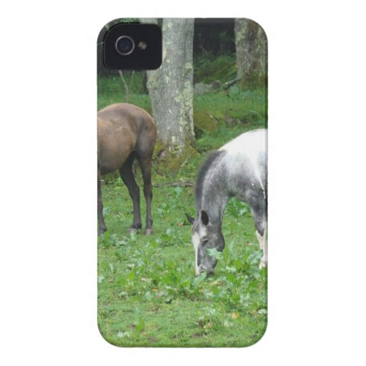 LOVELY HORSES iPhone 4 Case-Mate CASES
