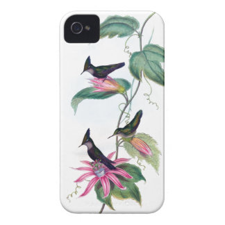 Lovely HUMMINGBIRDS iPhone 4 case