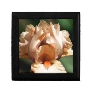Lovely Iris Keepsake Box