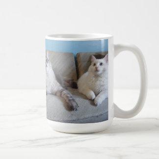 Lovely kitty mug