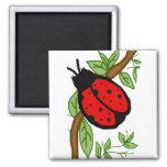 Lovely lady bug magnet