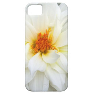 Lovely Lady White Flower Collection iPhone 5 Cover