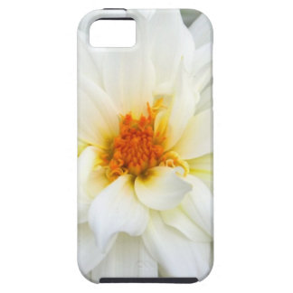 Lovely Lady White Flower Collection iPhone 5 Covers