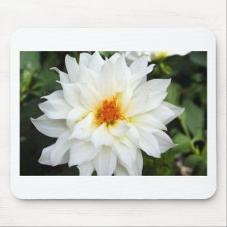 Lovely Lady White Flower Collection Mouse Pad