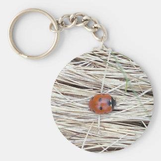 Lovely Ladybug Key Chain