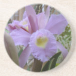 Lovely Lavender Orchid Coasters