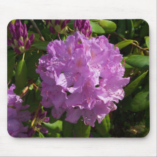 Lovely Lavender Rhododendron Mouse Pad