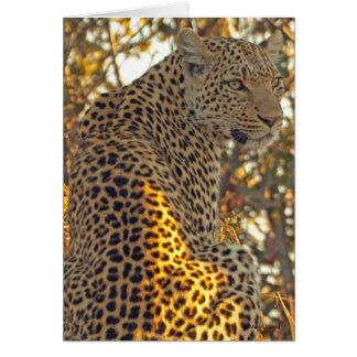 Lovely Leopard Photo card