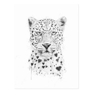 Valentines Themed Lovely leopard postcard