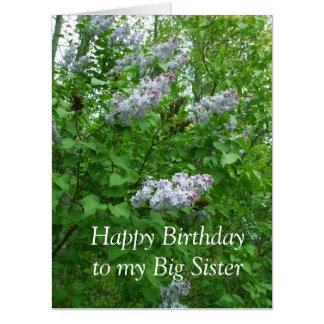 Lovely Lilac Bush Card