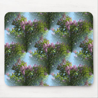 Lovely Lilacs... Mouse Pad