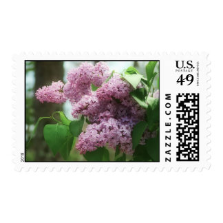 lovely lilacs postage