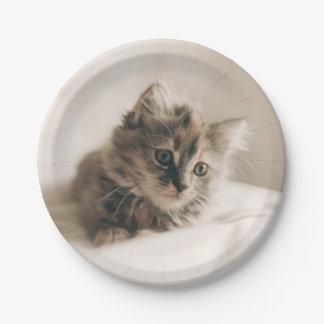 Lovely Little Kitten Cat Kitty Paper Plate