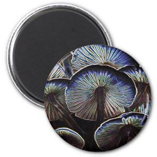 Lovely lovely mushrooms 2 inch round magnet