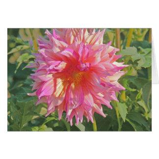 """LOVELY LUMINOUS PINK DAHLIA"" /BLANK INSIDE CARD"