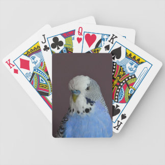 Lovely Macro Budgie Bird Bicycle Playing Cards