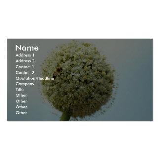 Lovely Onion, allium cepa Business Card Template